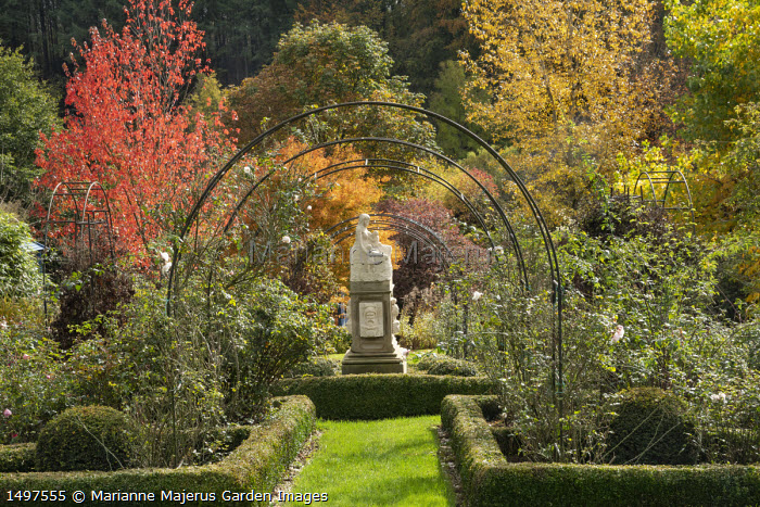 Framed view under metal archway to statue, clipped box hedge edging, roses, Acer rubrum, Populus trichocarpa