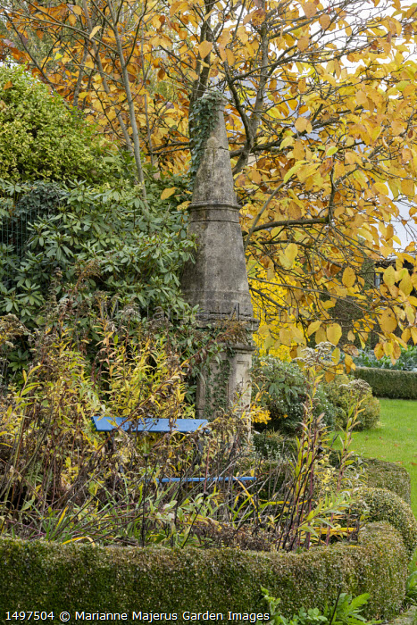 Stone obelisk in border by blue painted bench, low clipped Buxus sempervirens hedge, Magnolia 'Limelight'