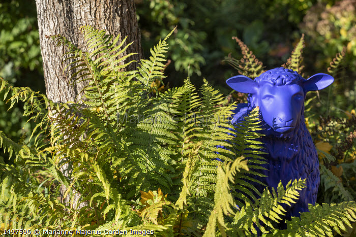 Blue sheep statue with ferns around base of tree
