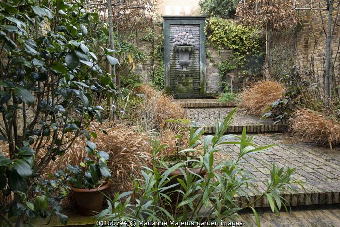 Formal town garden, pleached hornbeam screens, shell fountain, Camellia japonica, wide brick steps, Hakonechloa macra