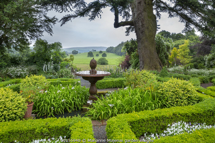 Stone water fountain in centre of box parterre, irises, view across countryside, foxgloves, Abies cephalonica