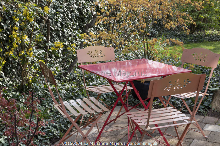 Pink metal table and chairs on small patio, acer in container, mahonia