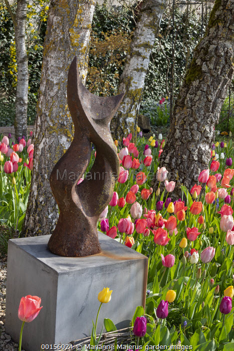 Metal sculpture on plinth, pink tulips around birch tree