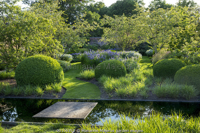 Clipped mounds of Buxus sempervirens in carpet of Hakonechloa macra, stepping stone over canal