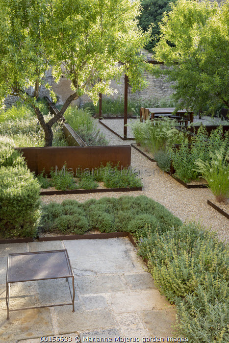 Overview of contemporary mediterranean terrace, stone patio, raised steel rills, almond trees, gravel paths and mulch, steel border edging, Stipa calamagrostis