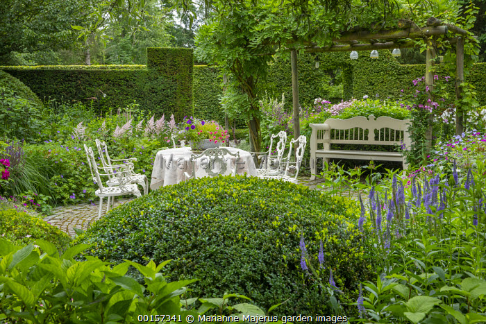 Metal table and chairs on circular stone sett patio, wooden bench under pergola, Astilbe 'Dito', petunias in pot, tablecloth, large clipped Buxus sempervirens dome, Veronica longifolia 'Blauriesin', garden 'room'