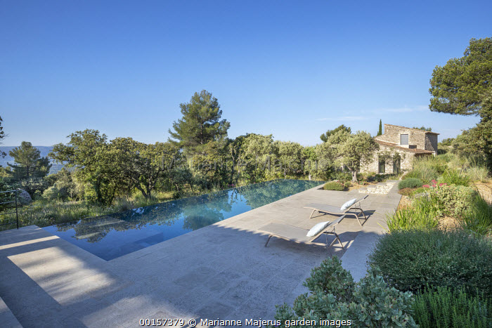 Contemporary recliner chairs on stone terrace by infinity swimming pool in mediterranean garden, olive trees