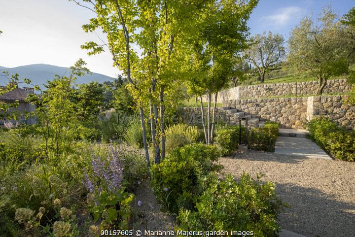 Gravel terrace in sloping mediterranean garden, stone walls
