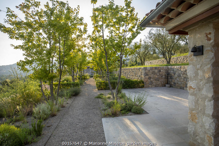 Gravel path through terraced mediterranean garden, stone paving and walls