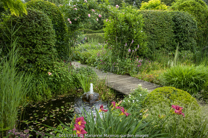 Timber path over wildlife pond, bubbling stone fountain, Hemerocallis 'Olive Bailey Langdon', garden 'rooms', rose arch with Rosa 'Kir Royal' and 'Camelot'