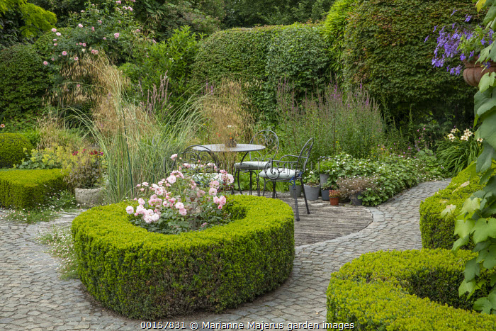 Table and chairs on decking, stone paving, Rosa 'Bonica' in clipped box hedge enclosure, Stipa gigantea