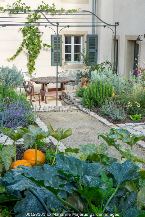Table and chairs under metal pergola on stone patio outside back door, stone path edging, Stipa tenuissima, rosemary, pumpkin, courgette