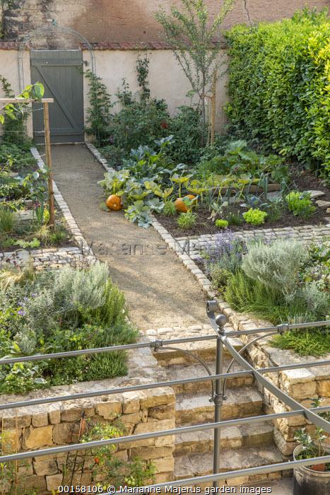 Path through walled potager to gate, pumpkins, lettuces, Gaura lindheimeri