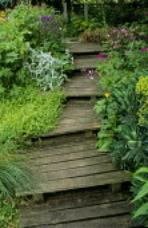 Wooden steps up bank