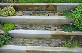 Stone steps with herbs in paving cracks
