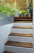 Steps topped with decking