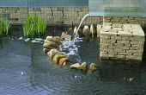 Glass water chute, stone-filled gabions, bubbling water fountains, Iris ensata