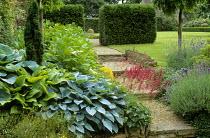 Hostas, stone stairs, yew hedge