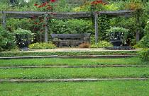 Grass steps, wooden bench by Gaze Burvill, pergola, Climbing Rosa 'Delmur' Altissimo