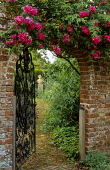 Doorway with roses, view to bust on plinth