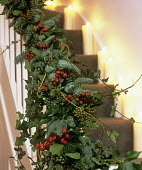 Ivy, rosehip and pine garland