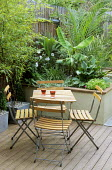 Table and chairs, raised bed with Phoenix canariensis and Musa basjoo