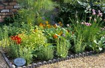 Herb garden, ornamental brick edging, label, nasturtium, fennel, rosemary, chives