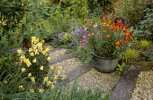 Wallflowers in containers, steps with gravel edged with wooden railway sleepers
