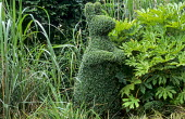 Topiary rabbit, with Fatsia japonica and ornamental grasses