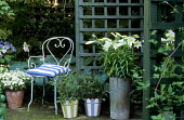 Trellis arbour, striped painted containers, white lilies, metal chair with striped cushion