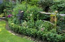 Rustic fence, curved border with brick and box edging, Sambucus 'Black Lace', Allium hollandicum 'Purple Sensation'