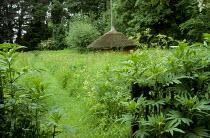 Mown grass path through meadow