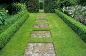 Stepping stone path of brick squares set into lawn, box-edged borders