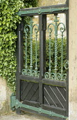 Wood and cast-iron gate, ivy