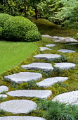 Japanese stepping stone path, Chinese silver grey granite, carpet moss