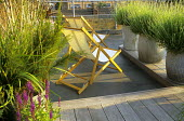 Roof terrace, deckchairs, lavender in containers