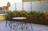 Table and chairs, bamboo in raised bed, glass screen