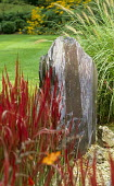 Standing stone slate water feature, grasses, Imperata cylindrica 'Rubra'