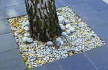 Slate paving, white pebbles around base of birch tree