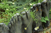 Path edging made of foot casts by Judy Wiseman, daisies