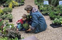 Choosing plants at a plant sale at Avon Cottage