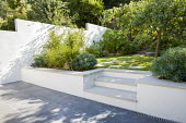 Steps from patio to lawn with stepping stones