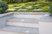 Steps to lawn with stepping stones
