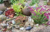 Fishing floats, Armeria maritima, sempervivum and ferns in shallow tray