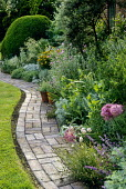 Sinuous brick path, cut edge of lawn, border with alliums and Galactites tomentosa, clipped box, mowing strip