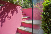 Steps to upper level, painted pink wall, glass screen