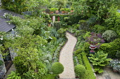 View from above green town garden
