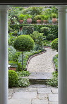 View along gravel path, standard box topiary, clipped standard ligustrum balls