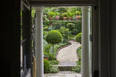 View to outside from inside doorway, clipped standard ligustrum balls