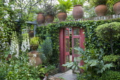 Red gate in ivy covered wall terracotta with containers